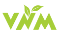 VNM Studio – Our Solution Your Success